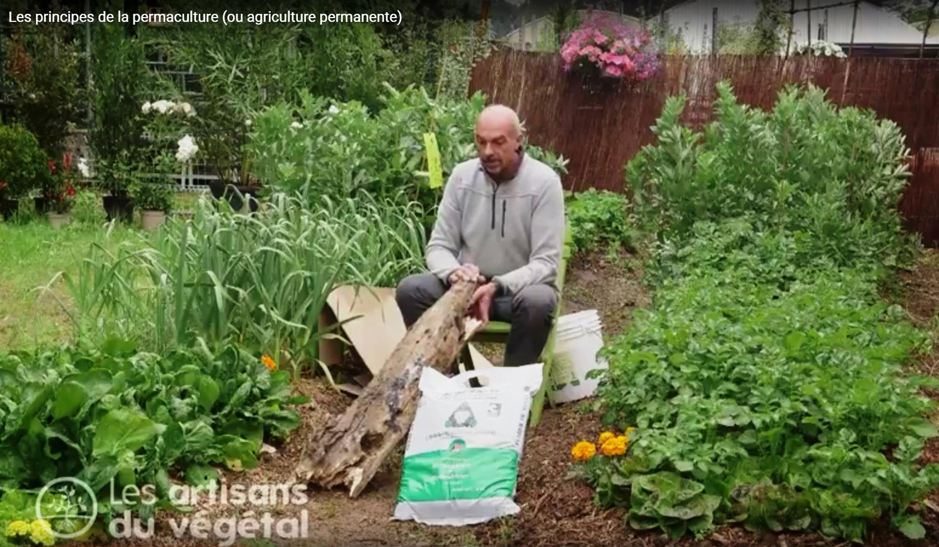 les principes de la permaculture ou agriculture permanente. Black Bedroom Furniture Sets. Home Design Ideas