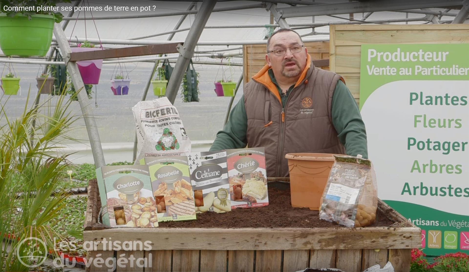 Comment Planter Ses Pommes De Terre En Pot